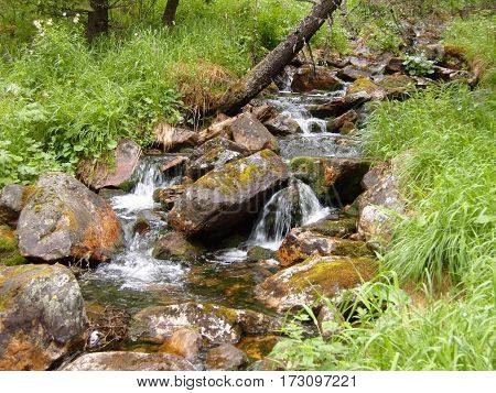 Beautiful natural waterfall in the forest in summer