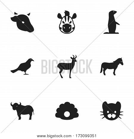 Set Of 9 Editable Nature Icons. Includes Symbols Such As Stallion, Ox, Groundhog And More. Can Be Used For Web, Mobile, UI And Infographic Design.