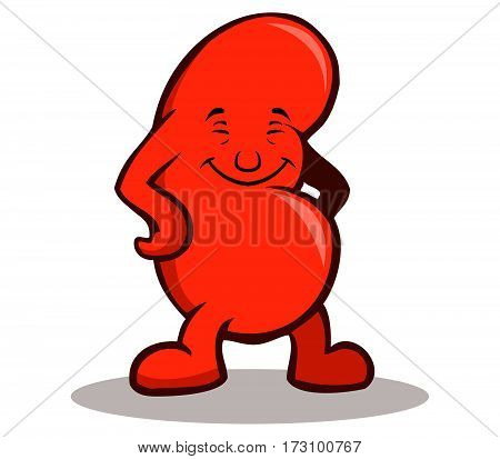 A vector illustration of happy kidney .