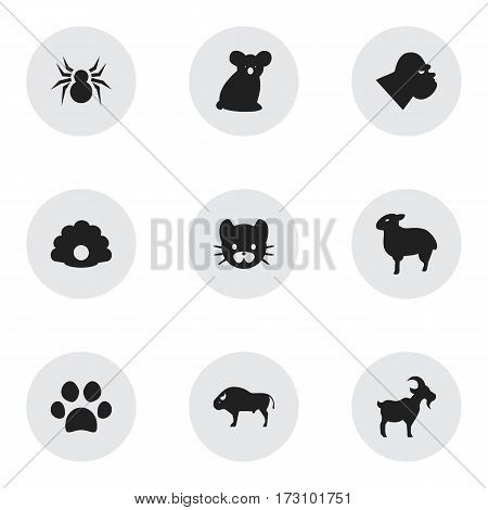 Set Of 9 Editable Nature Icons. Includes Symbols Such As Livestock, Australian Bear, Lamb And More. Can Be Used For Web, Mobile, UI And Infographic Design.