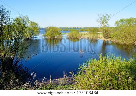 Spring landscape - trees at the bank of the blue river in sunny day. Colorful spring nature view of spring river and beautiful spring nature. Spring landscape in nice sunny spring weather
