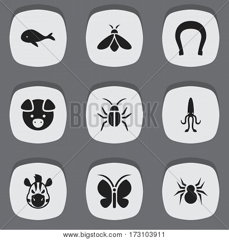 Set Of 9 Editable Animal Icons. Includes Symbols Such As Octopus, Arachind, Hog And More. Can Be Used For Web, Mobile, UI And Infographic Design.