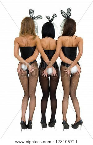 Sexy girls wearing a bunny costumes, back view, isolated on white background