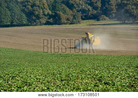 Harvester for harvesting beets on a green field