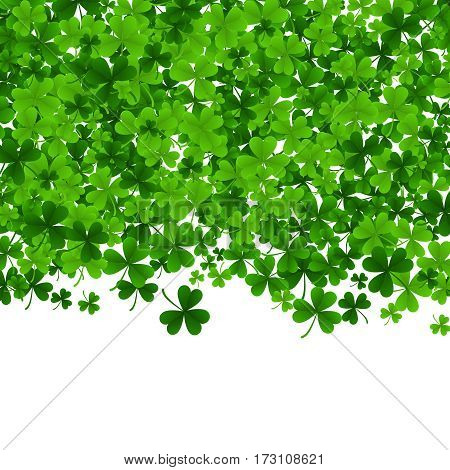 Background with clovers. Shamrock traditional symbol of Irish holiday. St. Patrick s Day vector illustration.