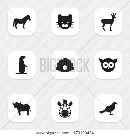 Set Of 9 Editable Animal Icons. Includes Symbols Such As Reindeer, Conch, Ox And More. Can Be Used For Web, Mobile, UI And Infographic Design.