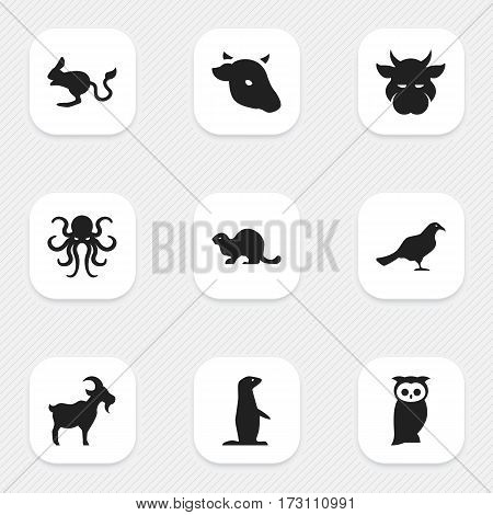 Set Of 9 Editable Nature Icons. Includes Symbols Such As Gull, Wildlife Castor, Bull And More. Can Be Used For Web, Mobile, UI And Infographic Design.