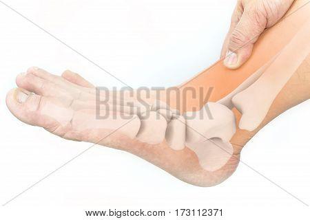 foot bones pain white background , foot injury