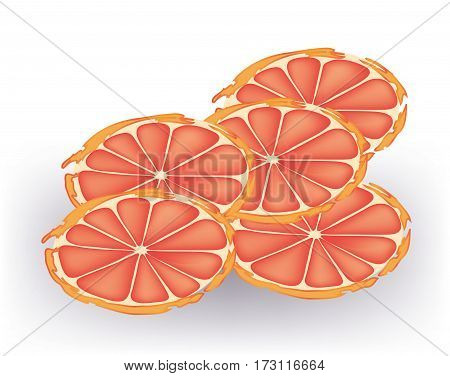 Abstract - slices of grapefruits on white background