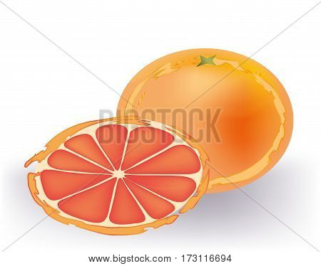 Delicious grapefruit and a slice on white background