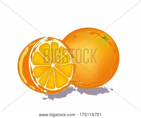 Fresh orange on white background with shadow