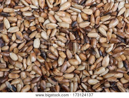 Overcooked peeled sunflower seeds background