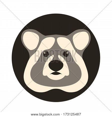 raccoon head vector illustration style Flat front