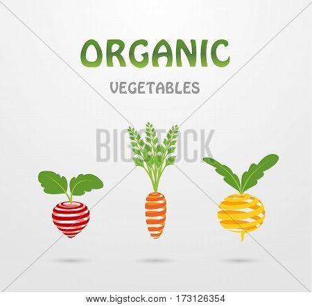Stylized ribbons organic vegetables: radish, carrots, turnips