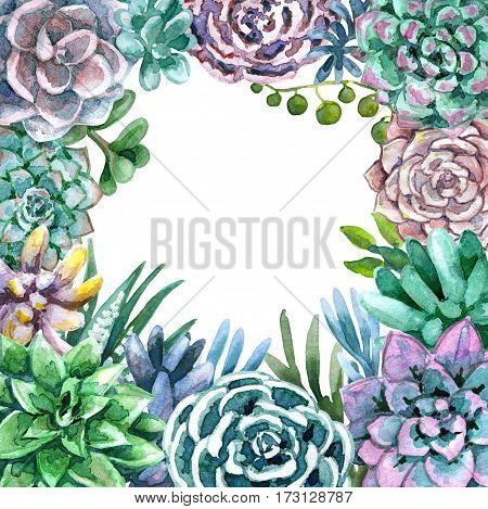 Hand drawn watercolor illustration. Floral elements for decoration. Square frame of succulents with space for text.
