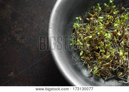 Flax sprouts in a bowl on a metal table top view horizontal