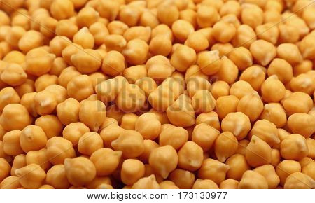 Cooked Soaked Chickpea Beans Close Up Background