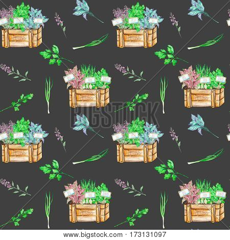 Seamless pattern with the isolated watercolor spices (spicy herbs) in a wood boxes: onion green, parsley, cilantro, sage and basil, painted on a dark background