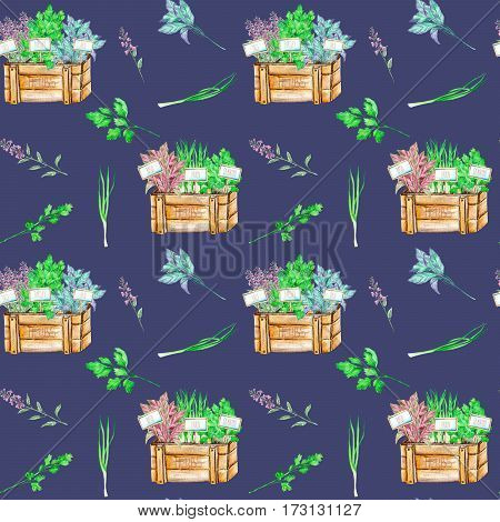 Seamless pattern with the isolated watercolor spices (spicy herbs) in a wood boxes: onion green, parsley, cilantro, sage and basil, painted on a dark blue background