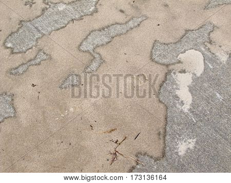 Found on a concrete sidewalk on Lake Michigan's shore... a masterpiece of abstract sand art painted by winter wind and sun.
