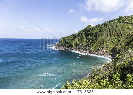 Coastline With Rainforest At The Island Of Dominica