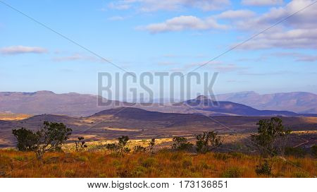 Panorama of the orange south african savanna in the background hills of the drakensberg mountains