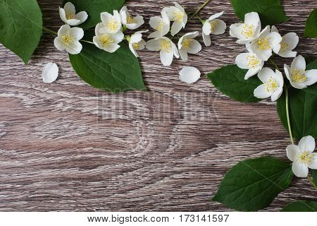 Frame of white flowers and jasmine petals lie on the wooden background. Wedding invitation card of white flowers. Space for text and design. White flowers and petals.