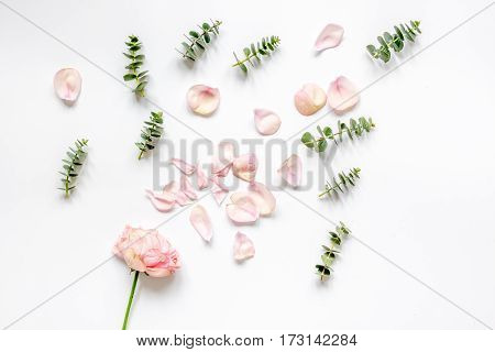 spring floral pattern in pastel colors with rose petals and eucalyptus on white table background top view