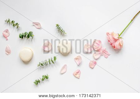 spring floral pattern with macaroons and flower petal in soft light on white background top view