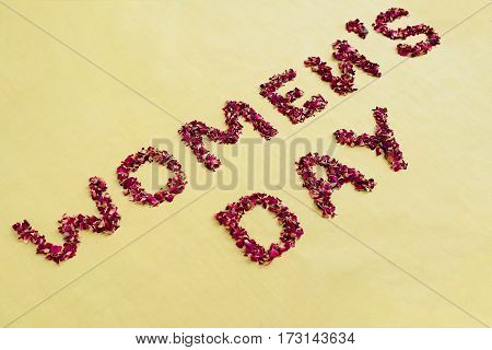Women's day lettering with rose petals on greenery background. Top view.