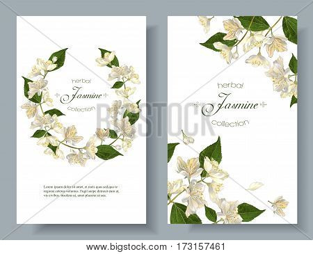 Vector jasmine flowers banners. Design for tea, natural cosmetics, beauty store, organic health care products, perfume, essential oil, aromatherapy. Can be used as greeting card or wedding invitation