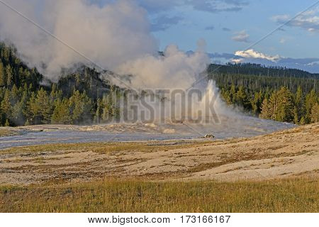Old Faithful Geyser Erupting at Sunset in Yellowstone National Park in Wyoming