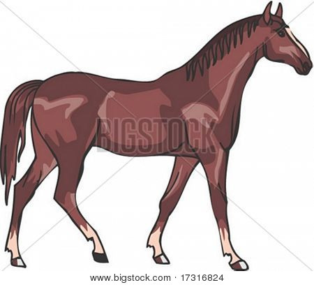 Horse Character