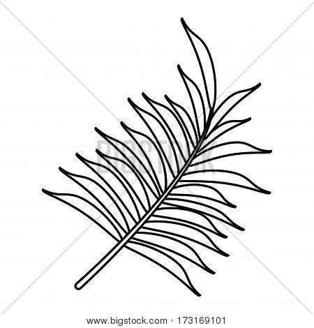 leave palm tropical flora thin line vector illustration eps 10