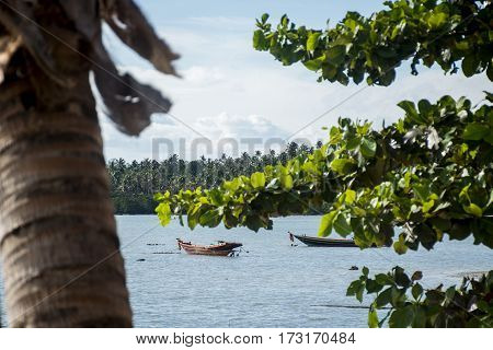 Long tail boat on the ocean in Koh Phangan Thailand view trough trees