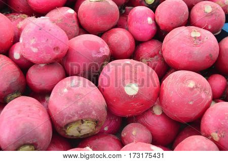 Organic and healthy radish and turnip pictures on greengrocery