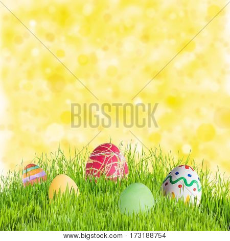 Eggs And Flowers In Green Grass