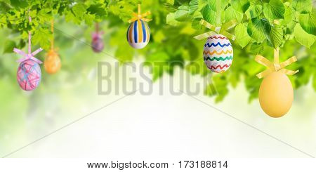 Easter Eggs In Green Branches