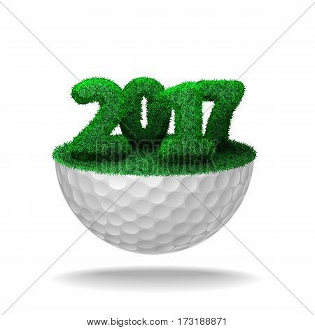 Numbers Of 2017 Textured With Grass On Half Golf Ball