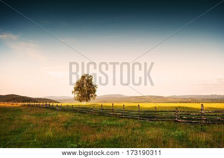 Beautiful Rural Landscape At Sunset