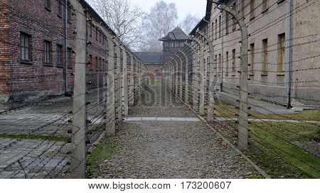 Fence with barbed wire in Auschwitz concentration camp