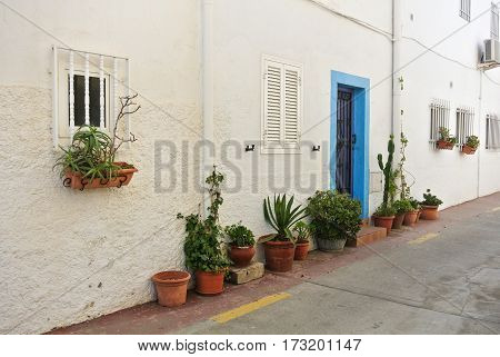 A white house and standing near it pots of flowers and other plants a close up at small town Cabo de Gata Andalusia Spain.