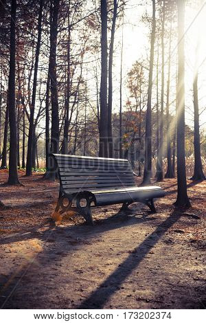 Bench in a park on sunny day in city of China.