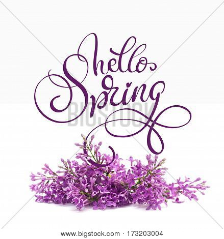Beautiful lilac branch isolated on white background and text Hello Spring. Calligraphy lettering.