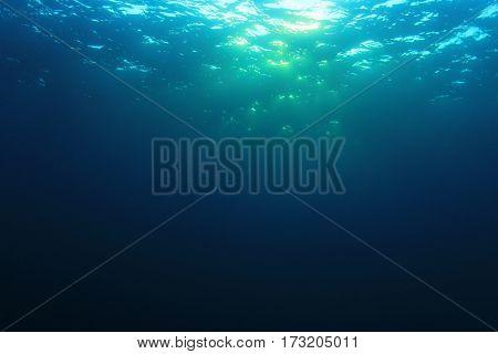 Underwater in ocean