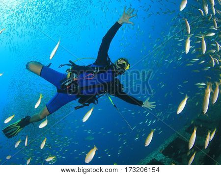 Scuba diver swims through fish school
