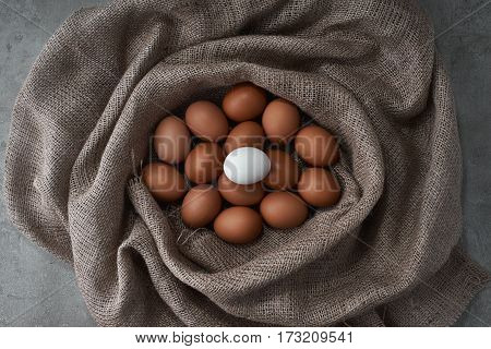 Eco fresh eggs from the farm to the kitchen.
