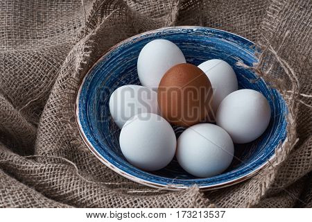 Ecological natural fresh eggs collected in the plate for cooking