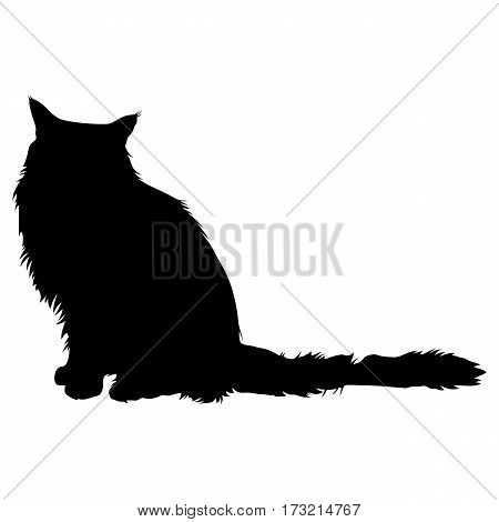 Black silhouette of cat on a white background for your design. Vector illustration.