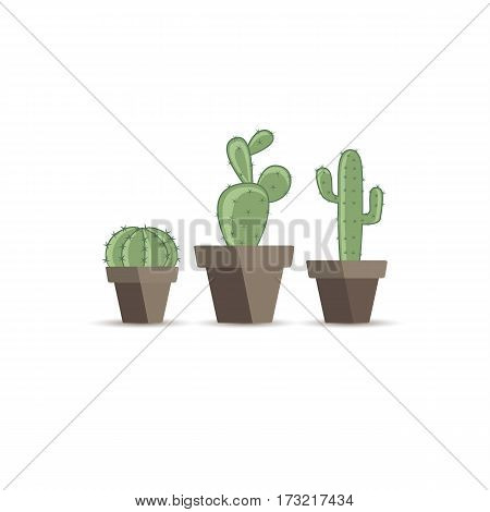 Set vector illustration of a cactus on a white background. Cactus in a flower pot